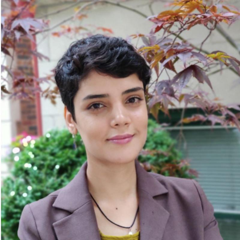 Salimeh Hosseini