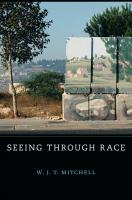 Seeing Through Race Cover