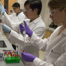 Three students in white lab coats and rubber gloves fill test tubes in a laboratory.