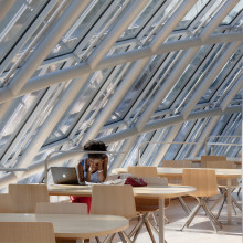 A student studies at a desk under the domed windows of the Mansueto Library.