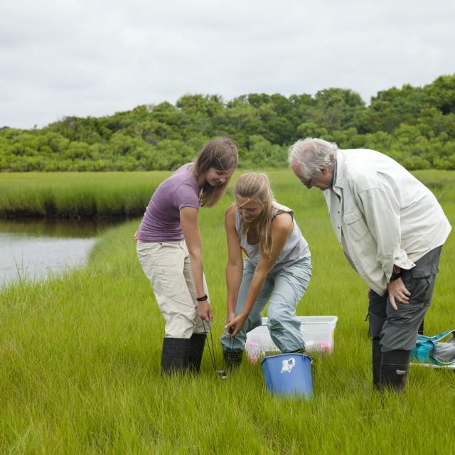 Two students work alongside a professor in a field near a lake near the Marine Biological Laboratory.
