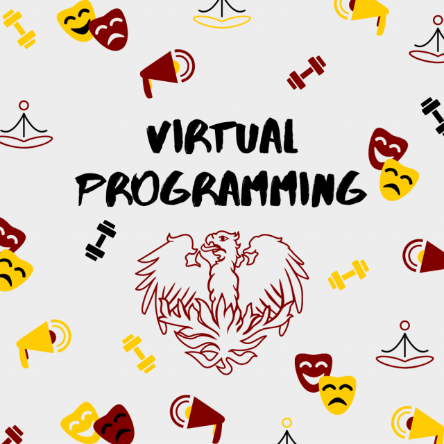 Virtual Programming graphic with text and phoenix on white background.