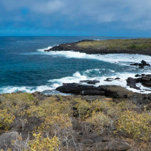 A beach on the Galapagos Islands is shown with rocks in the foreground a cloudy, blue sky in the background.
