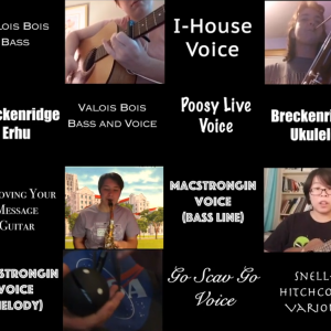 A screengrab of a compilation video of many Scav participants playing various instruments and singing.
