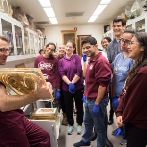 A group of students look on as a professor explains a body part in a dissection lab.