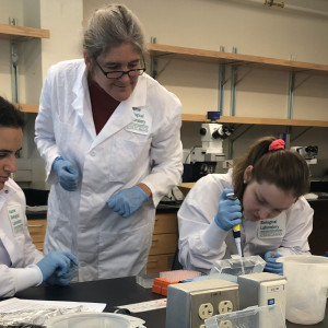 Students using micropipette.