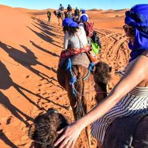 A train of camels crosses a stretch of desert. At right, a woman in a blue head wrap reaches back to touch the head of a camel.