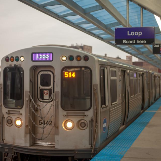 purple line towards the loop