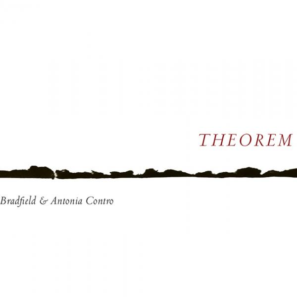 Theorem Book Cover