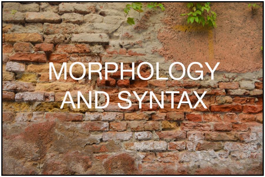 Morphology and Syntax