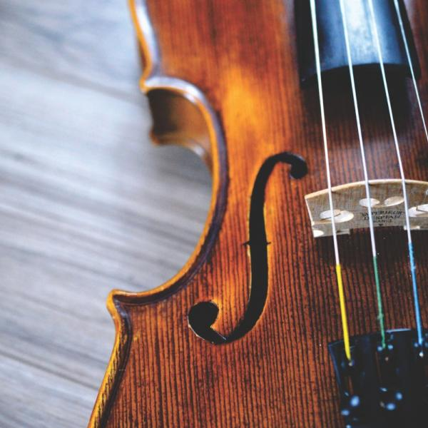 Close-up photo of a violin
