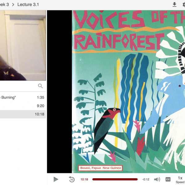 "Screenshot from Ailsa Lipscombe in a Panopto recorded lecture showing her face on the top left next to an image of album art that says ""Voices of the Rainforest"""