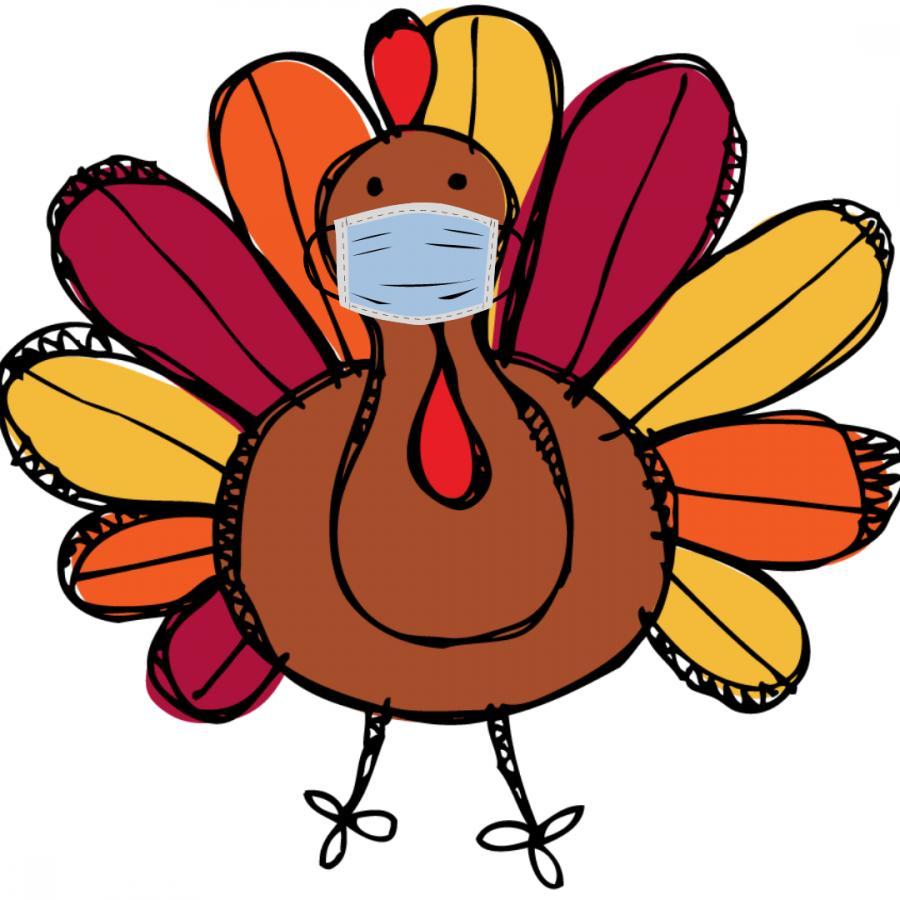 Turkey wearing a mask